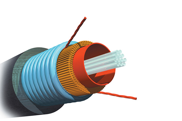 AMP Fiber Optic Cable, Outside Plant, 12-Fiber, MM 50/125µm, Armored Jacket 1-1427434-2